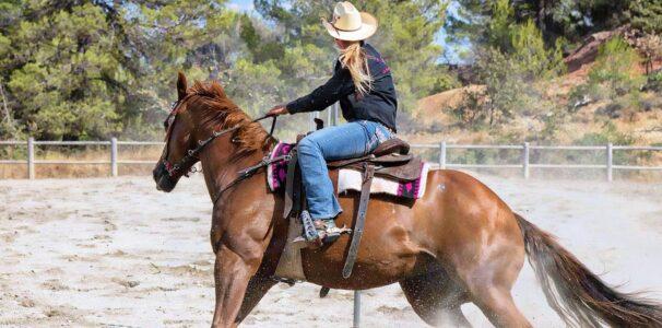 Go horseback riding at Cascade Stables