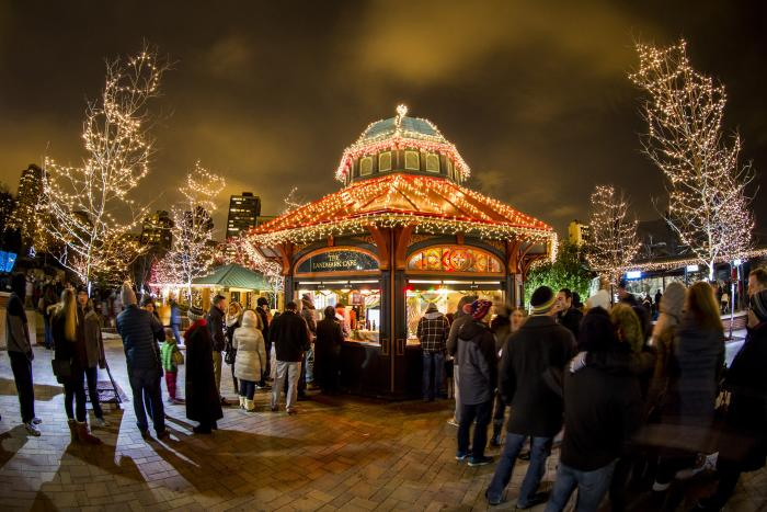 Zoo Year's Eve at Lincoln Park
